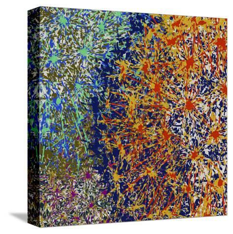 Profusion I-James Burghardt-Stretched Canvas Print