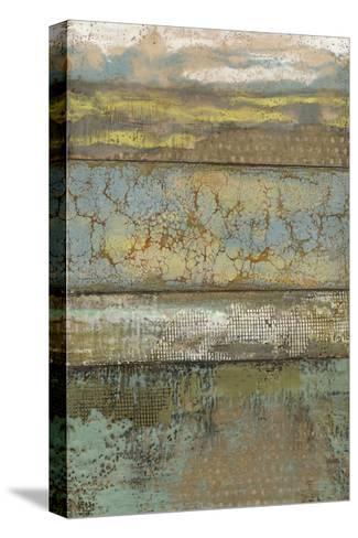 Segmented Textures I-Jennifer Goldberger-Stretched Canvas Print