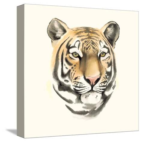 Safari Cat III-Grace Popp-Stretched Canvas Print