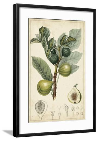 Exotic Fruits I-Turpin-Framed Art Print