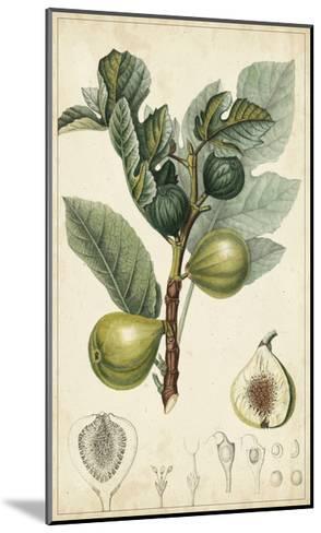 Exotic Fruits I-Turpin-Mounted Art Print