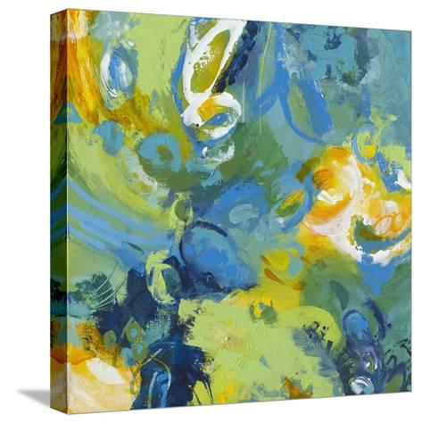 Wash Cycle-Janet Bothne-Stretched Canvas Print