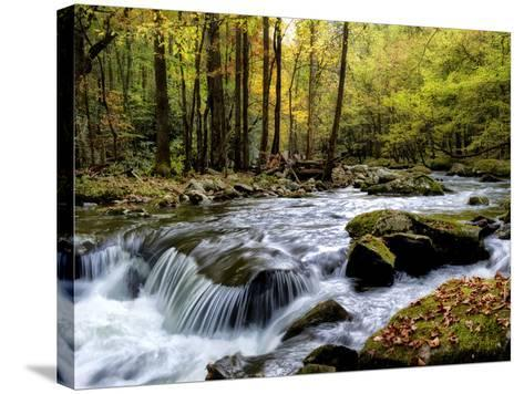 Over Flow I-Danny Head-Stretched Canvas Print