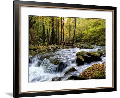 Over Flow I-Danny Head-Framed Art Print