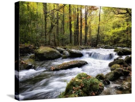 Over Flow II-Danny Head-Stretched Canvas Print