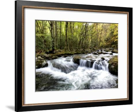 Waterslide-Danny Head-Framed Art Print