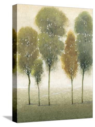 Beyond the Trees I--Stretched Canvas Print