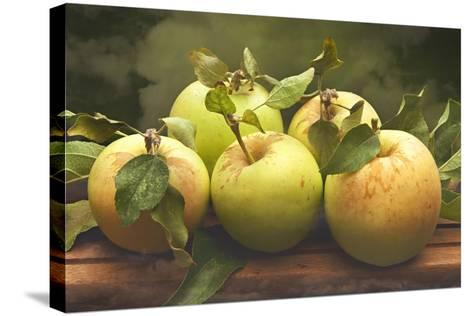 Jill's Green Apples I-Rachel Perry-Stretched Canvas Print