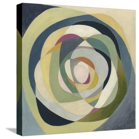 Through the Glass I-Megan Meagher-Stretched Canvas Print