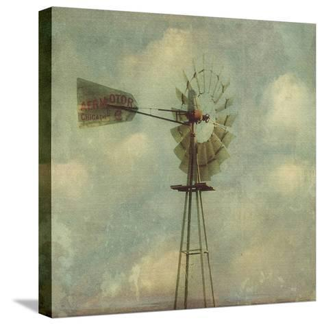 In Country I-Honey Malek-Stretched Canvas Print