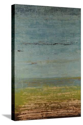 Easy Reflections IV-Natalie Avondet-Stretched Canvas Print