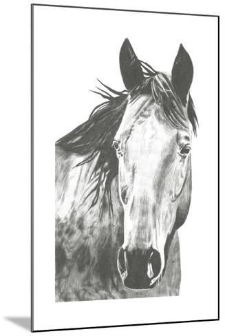 Wildlife Snapshot: Horse I-Naomi McCavitt-Mounted Art Print