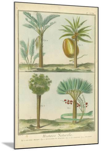 Histoire Naturelle Tropicals I-Martinet-Mounted Art Print