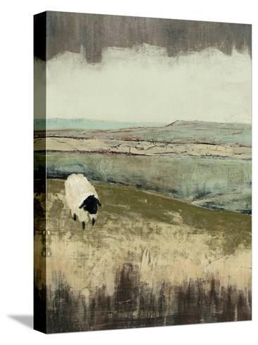 Open Meadow I-Grace Popp-Stretched Canvas Print