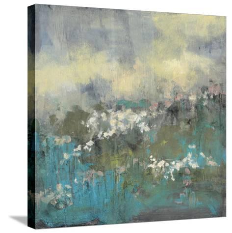 Painterly Field II-Jennifer Goldberger-Stretched Canvas Print