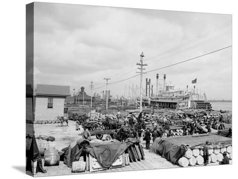 Levee, Foot of Canal St., New Orleans--Stretched Canvas Print