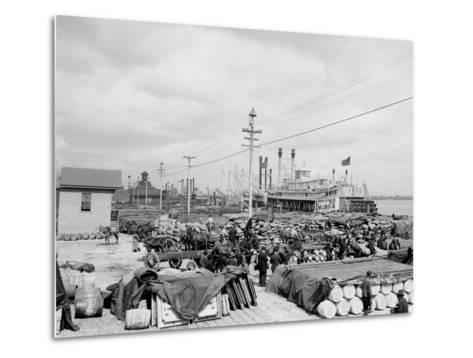 Levee, Foot of Canal St., New Orleans--Metal Print