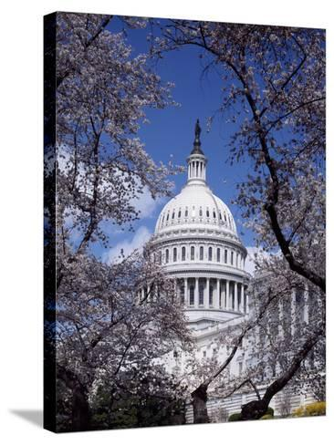 United States Capitol Building - Houses of Congress-Carol Highsmith-Stretched Canvas Print