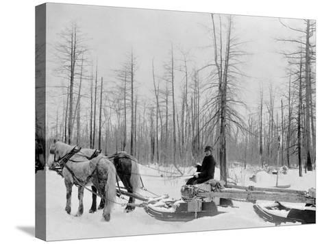 Logging in Michigan, the Sled--Stretched Canvas Print