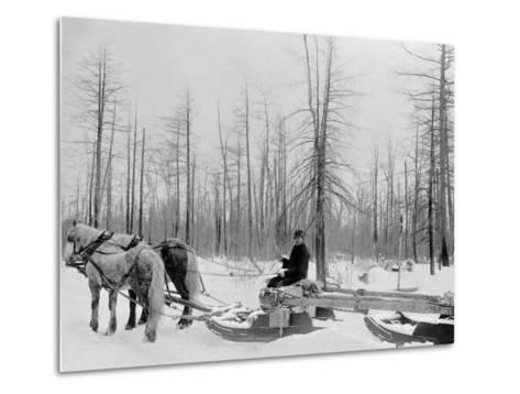 Logging in Michigan, the Sled--Metal Print