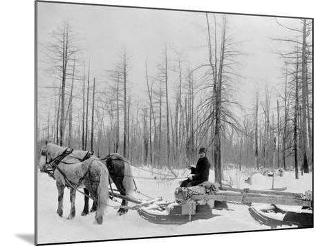 Logging in Michigan, the Sled--Mounted Photo