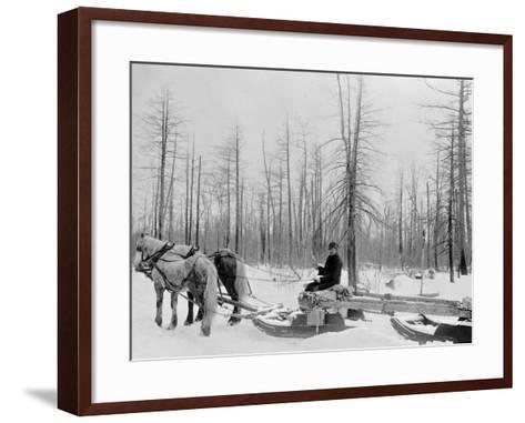 Logging in Michigan, the Sled--Framed Art Print