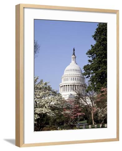 United States Capitol Building - Houses of Congress-Carol Highsmith-Framed Art Print