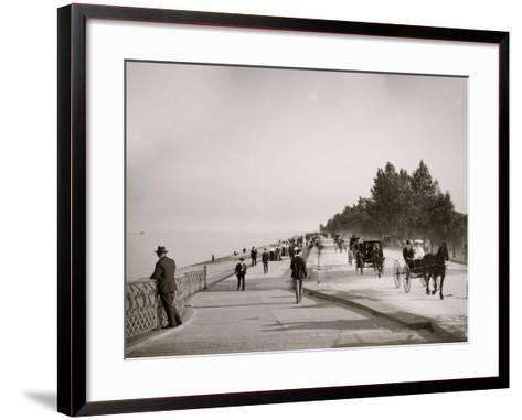 Lake Shore Drive, Lincoln Park, Chicago, Ill.--Framed Art Print