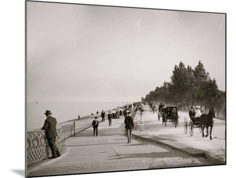 Lake Shore Drive, Lincoln Park, Chicago, Ill.--Mounted Photo