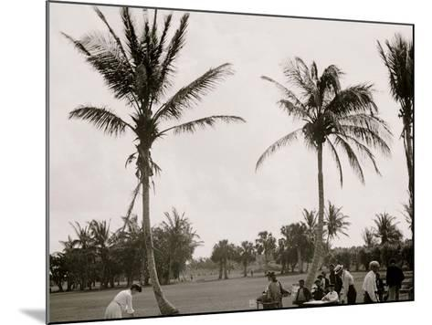 No. 1 Tee, Golf Links, Palm Beach, Fla.--Mounted Photo