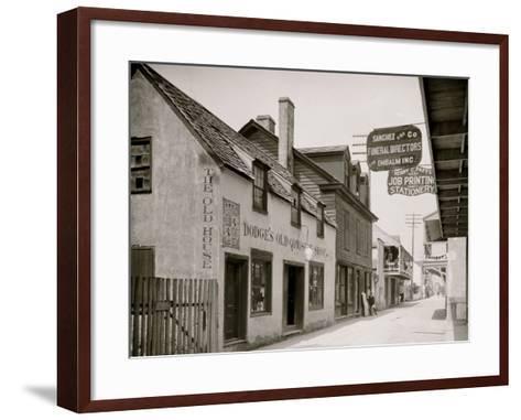 Dodges Old Curiosity Shop, St. George Street, St. Augustine, Fla.--Framed Art Print