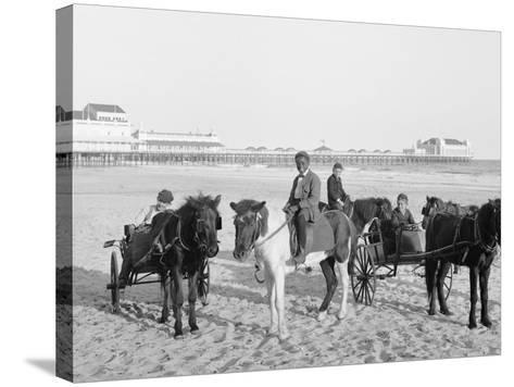 Ponies on the Beach, Atlantic City, N.J.--Stretched Canvas Print