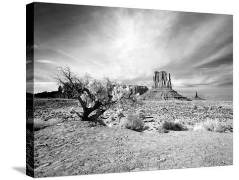 Monument Valley, Arizona-Carol Highsmith-Stretched Canvas Print