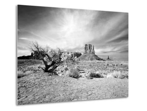 Monument Valley, Arizona-Carol Highsmith-Metal Print