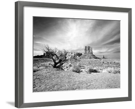 Monument Valley, Arizona-Carol Highsmith-Framed Art Print