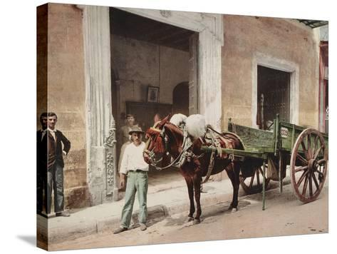 A Mule Cart in Havana Led by a Vendor-William Henry Jackson-Stretched Canvas Print
