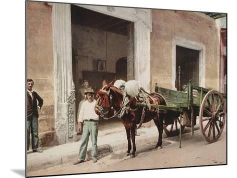 A Mule Cart in Havana Led by a Vendor-William Henry Jackson-Mounted Photo