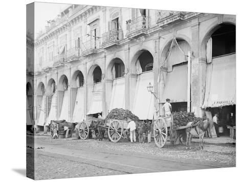 Fruit Wagons Unloading at Market, Havana, Cuba--Stretched Canvas Print