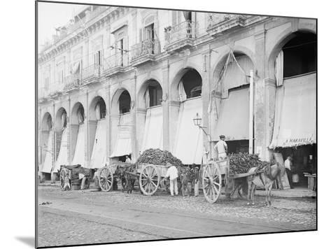 Fruit Wagons Unloading at Market, Havana, Cuba--Mounted Photo