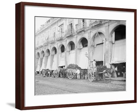 Fruit Wagons Unloading at Market, Havana, Cuba--Framed Art Print