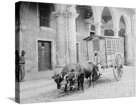 Meat Wagon, Havana, Cuba--Stretched Canvas Print