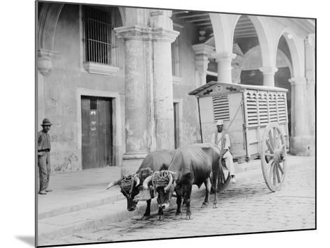 Meat Wagon, Havana, Cuba--Mounted Photo