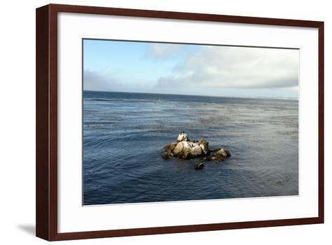 Monterey Bay-Carol Highsmith-Framed Art Print