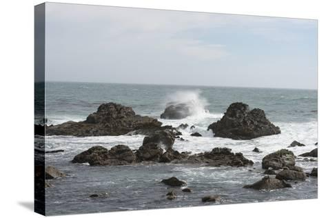 Pacific Coast in Northern California-Carol Highsmith-Stretched Canvas Print