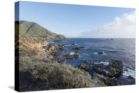 Road Through Pacific Grove and Pebble Beach-Carol Highsmith-Stretched Canvas Print