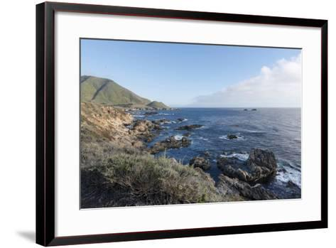 Road Through Pacific Grove and Pebble Beach-Carol Highsmith-Framed Art Print