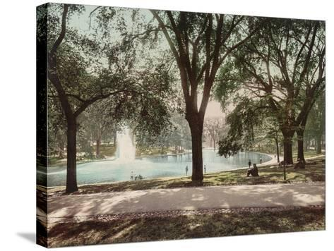 Frog Pond--Stretched Canvas Print