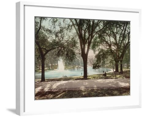Frog Pond--Framed Art Print