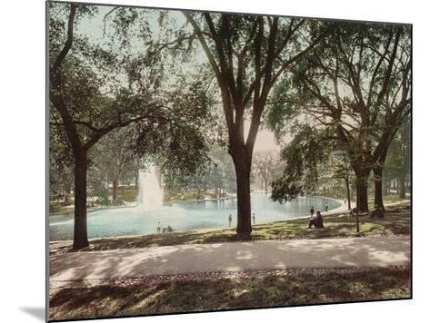 Frog Pond--Mounted Art Print