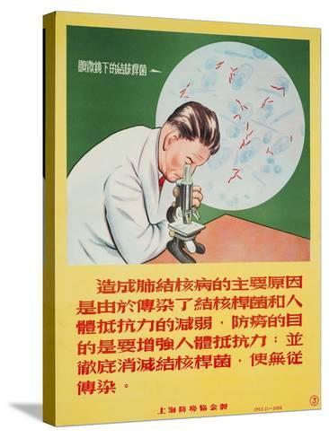 A Doctor Looks into a Microscope of Mycobacterium Tuberculosis--Stretched Canvas Print